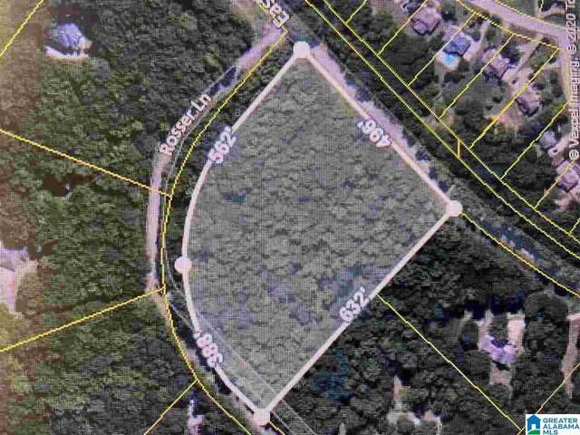 Rosser Lane #28, Mccalla, AL 35111 (MLS #900724) :: Lux Home Group