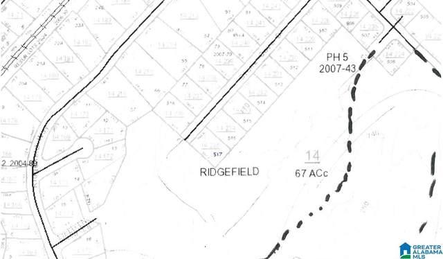 195 Stone Creek Drive Lot #517, Margaret, AL 35120 (MLS #901555) :: Sargent McDonald Team