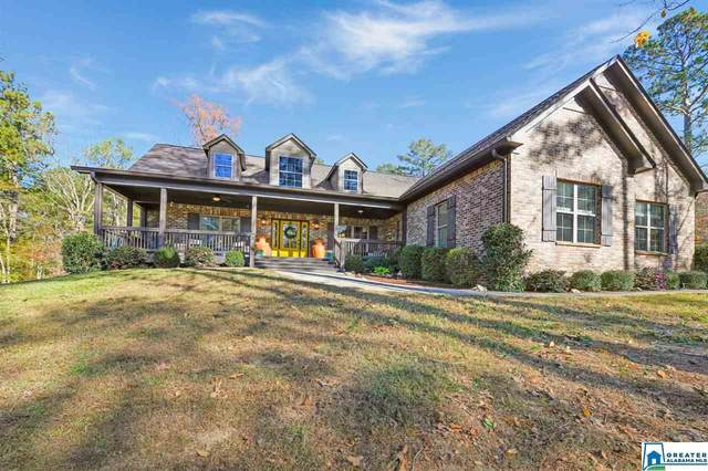 133 Carriage Creek Path, Chelsea, AL 35043 (MLS #901945) :: Josh Vernon Group