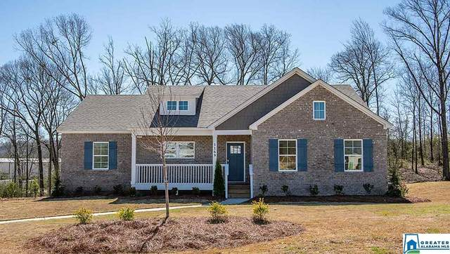 1169 Mountain Laurel Cir, Moody, AL 35004 (MLS #860420) :: Josh Vernon Group