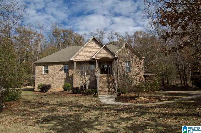 933 Macdonald Lake Road, Springville, AL 35146 (MLS #1271448) :: Sargent McDonald Team