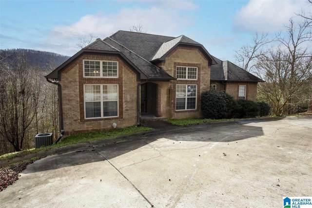 196 Ridgewood Drive, Remlap, AL 35133 (MLS #1274829) :: Josh Vernon Group