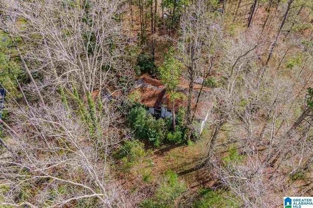 4775 Caldwell Mill Rd 51 And 52, Vestavia Hills, AL 35243 (MLS #1278905) :: Lux Home Group