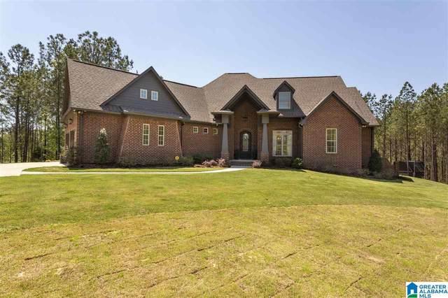 1130 Highway 336, Chelsea, AL 35043 (MLS #1280820) :: Lux Home Group