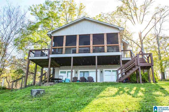 264 Nova Circle, Alpine, AL 35014 (MLS #1281041) :: The Natasha OKonski Team