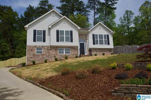 1163 Cameron Cove Circle, Leeds, AL 35094 (MLS #1282517) :: Josh Vernon Group