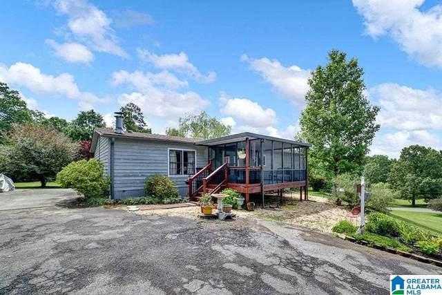 4251 Oak Park Drive, Mount Olive, AL 35117 (MLS #1285413) :: EXIT Magic City Realty