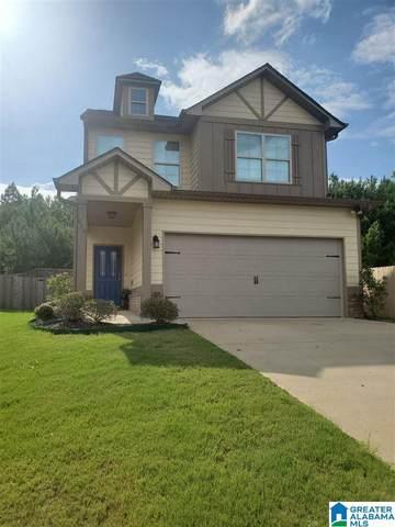 670 Briar Ridge Circle, Odenville, AL 35120 (MLS #1291976) :: Josh Vernon Group