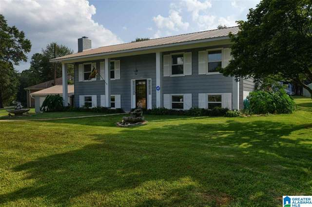 195 Pineview Circle, Cropwell, AL 35054 (MLS #1293242) :: Sargent McDonald Team