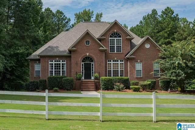112 Dorough Road, Columbiana, AL 35051 (MLS #1295362) :: Lux Home Group