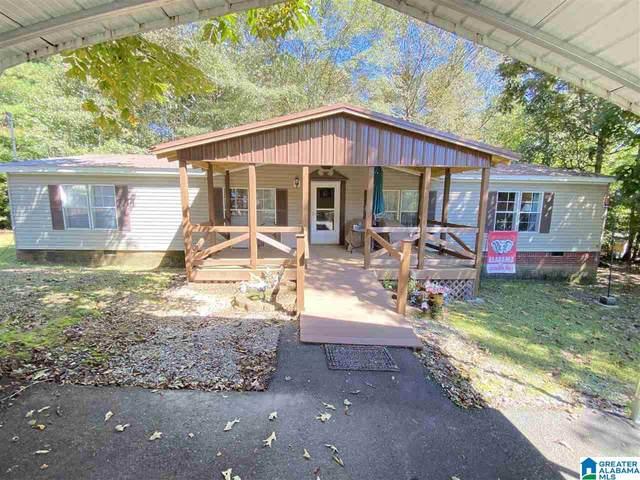 2607 Evergreen Road, Springville, AL 35146 (MLS #1299382) :: Kellie Drozdowicz Group