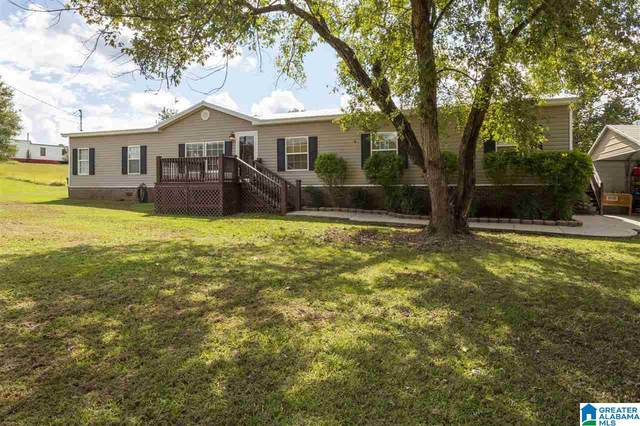 22135 Eastern Valley Road, Mccalla, AL 35111 (MLS #1299538) :: Lux Home Group