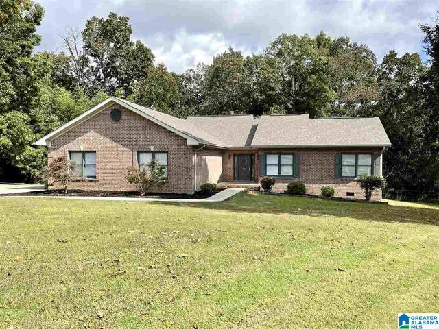 205 Hickory Hill Circle, Oneonta, AL 35121 (MLS #1300338) :: Kellie Drozdowicz Group