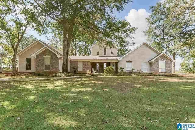 13077 Country Club Drive, Northport, AL 35475 (MLS #1301801) :: Josh Vernon Group