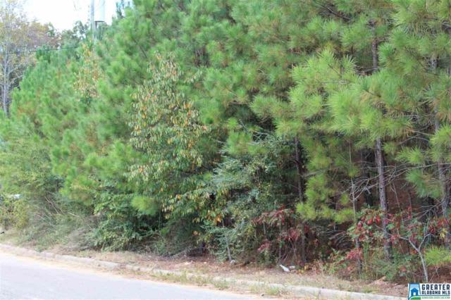 0 Dominion Rd #1, Springville, AL 35146 (MLS #764934) :: Brik Realty