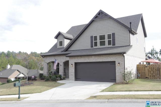 142 Blackstone Ct, Chelsea, AL 35043 (MLS #800861) :: The Mega Agent Real Estate Team at RE/MAX Advantage