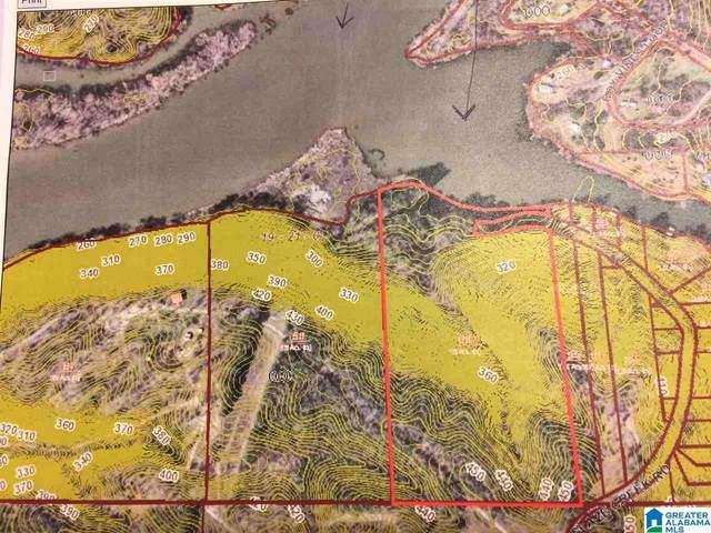 572 & 650 Glaze Creek Road 2 Parcels, Bessemer, AL 35023 (MLS #808535) :: Sargent McDonald Team