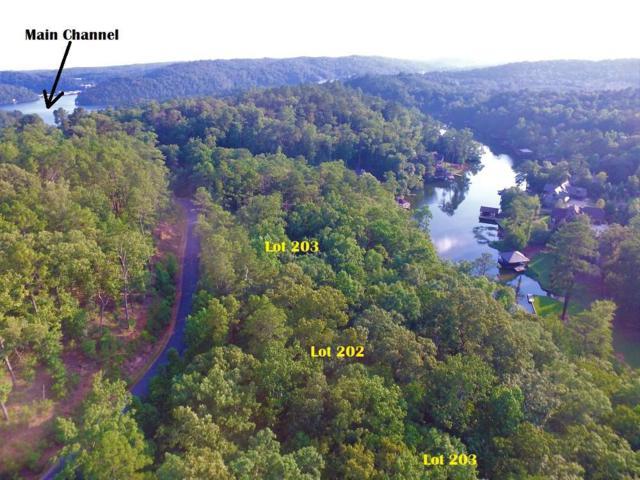 201 Big Y Cove Loop #1, Rockford, AL 35136 (MLS #811424) :: LIST Birmingham
