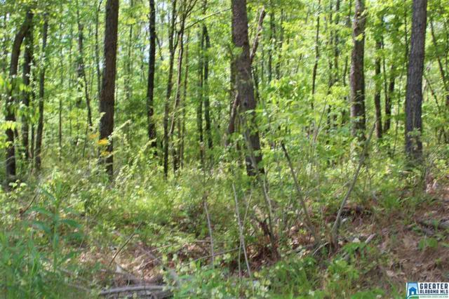 8013 Cedar Mountain Rd #1, Pinson, AL 35126 (MLS #815026) :: Brik Realty