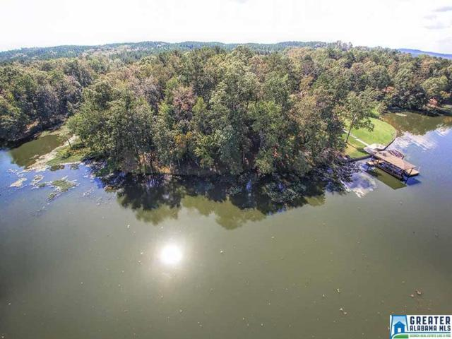 101 Castaway Rd #101, Sylacauga, AL 35151 (MLS #824796) :: Gusty Gulas Group