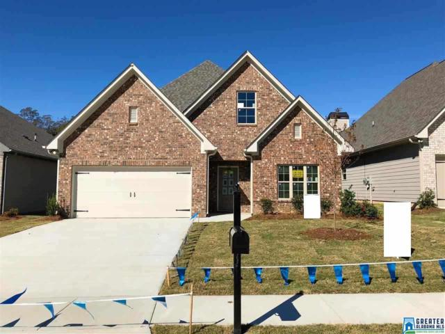 240 Sterling Pl, Odenville, AL 35120 (MLS #833575) :: Gusty Gulas Group