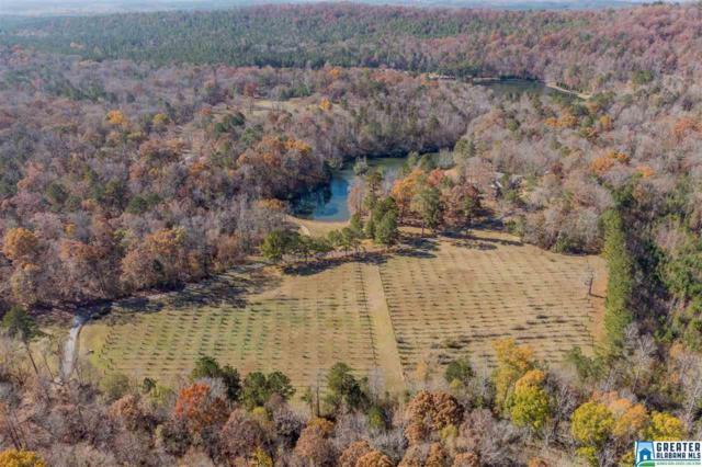 343 Creekside Dr, Harpersville, AL 35078 (MLS #835001) :: Gusty Gulas Group