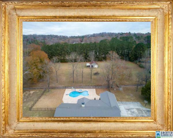 5865 Old Kendrick Rd, Helena, AL 35080 (MLS #835474) :: The Mega Agent Real Estate Team at RE/MAX Advantage