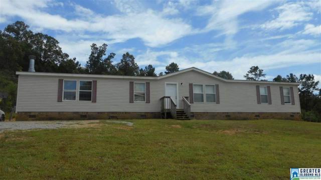 222 Mountain Terrace Dr, Odenville, AL 35120 (MLS #836891) :: Brik Realty