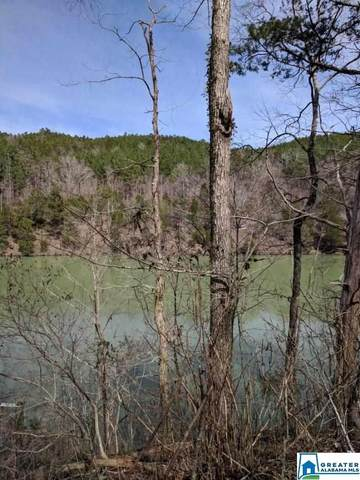 167 Big Shoals Rd Lot 14, Adger, AL 35006 (MLS #840685) :: Bailey Real Estate Group