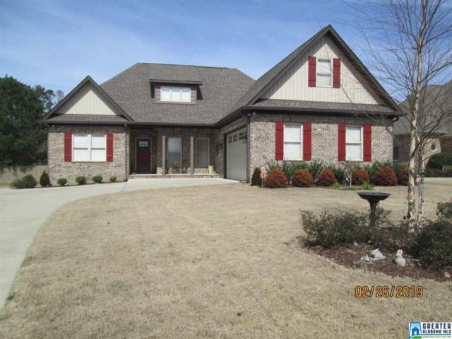 65 Willow Branch Rd, Odenville, AL 35120 (MLS #841566) :: LIST Birmingham