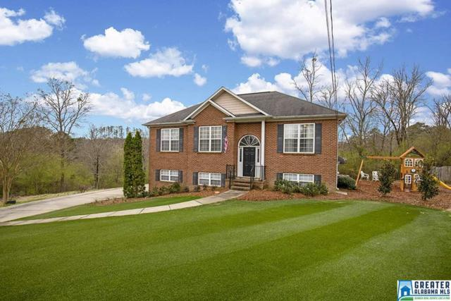 75 Black Oak Ln, Odenville, AL 35120 (MLS #842777) :: Brik Realty