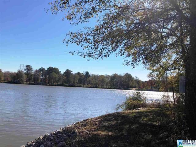 1046 Chancellors Ferry Loop, Harpersville, AL 35078 (MLS #848395) :: Josh Vernon Group