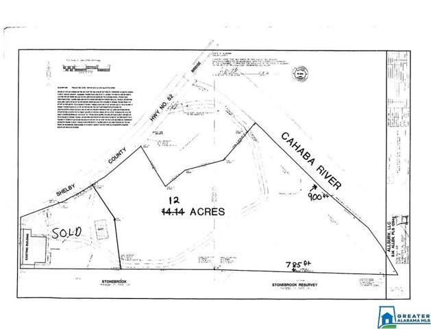 12 Acres Hwy 52 #1, Helena, AL 35080 (MLS #849818) :: Sargent McDonald Team