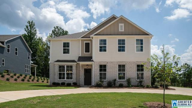 194 Rock Terrace Cir, Helena, AL 35080 (MLS #854464) :: Brik Realty