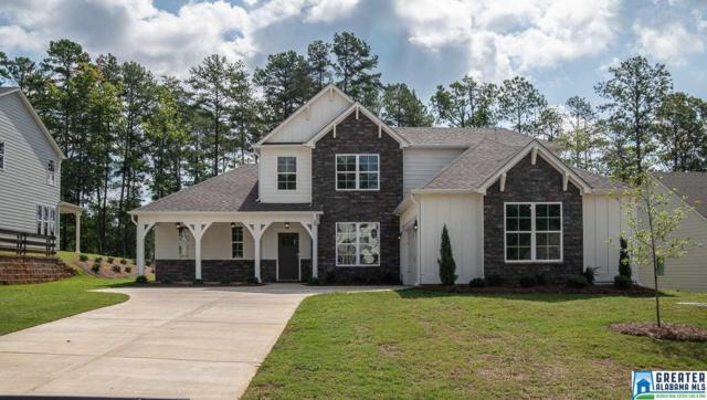 176 Rock Terrace Cir, Helena, AL 35080 (MLS #857352) :: Brik Realty