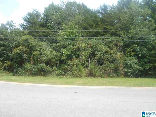 6480 White Oak Ln Vacant, Hueytown, AL 35023 (MLS #857661) :: Howard Whatley