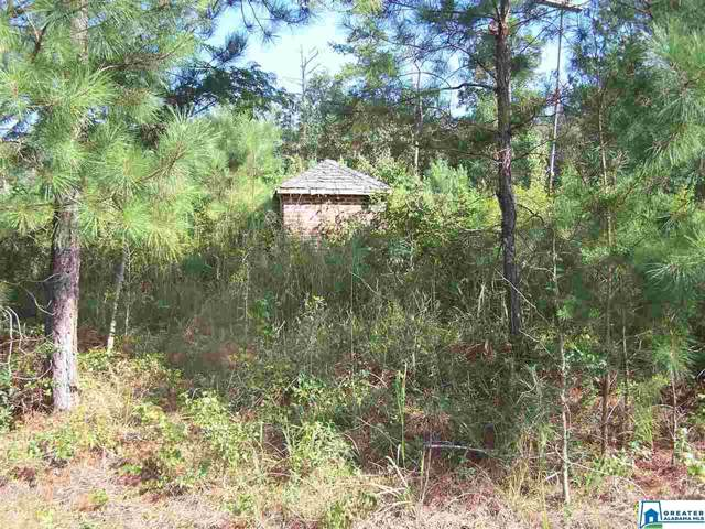 Jackson Trl 4 ACRES, Altoona, AL 35952 (MLS #862535) :: Sargent McDonald Team