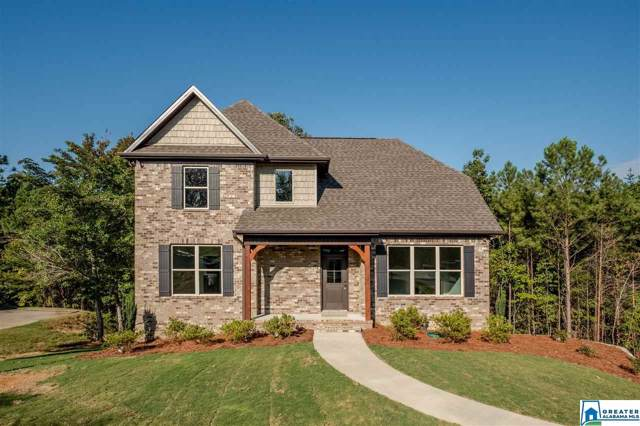 5862 Dandridge Cir, Clay, AL 35126 (MLS #864517) :: Gusty Gulas Group
