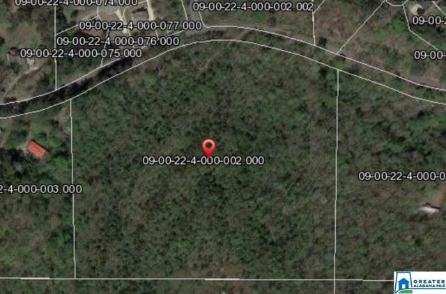 5851 Lazy Acres Trl #5851, Pinson, AL 35126 (MLS #865350) :: Bentley Drozdowicz Group