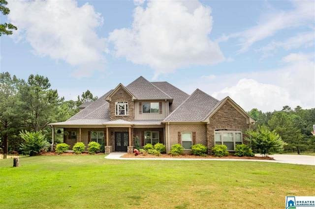415 Lyles Dr, Odenville, AL 35120 (MLS #873423) :: Gusty Gulas Group