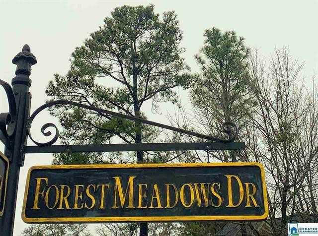 2095 Forest Meadows Cir, Birmingham, AL 35242 (MLS #874016) :: Josh Vernon Group