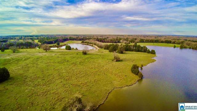 0 Co Rd 45 #0, MARION JUNCTION, AL 36759 (MLS #874178) :: Howard Whatley