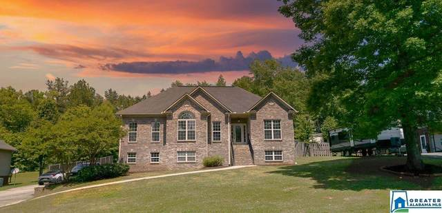 262 Creekview Ln, Lincoln, AL 35096 (MLS #883080) :: Howard Whatley