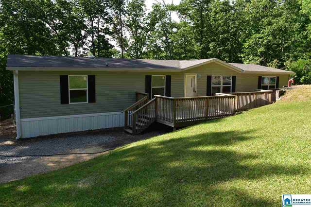 55 Shady Acres Dr, Odenville, AL 35120 (MLS #883133) :: Josh Vernon Group