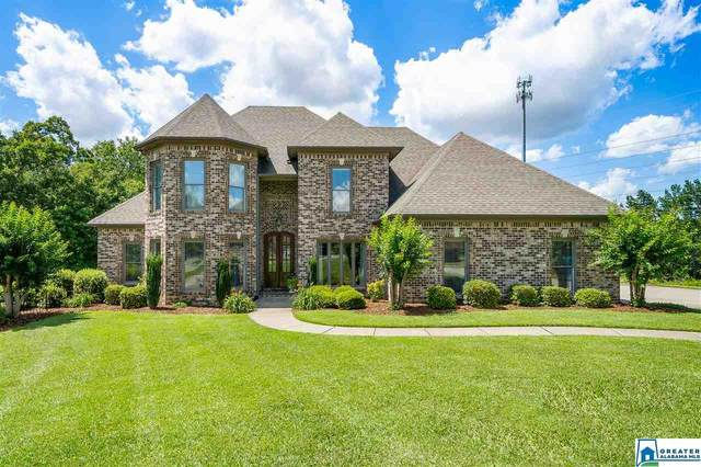 4545 Crown Point Ln, Mount Olive, AL 35117 (MLS #885949) :: Sargent McDonald Team