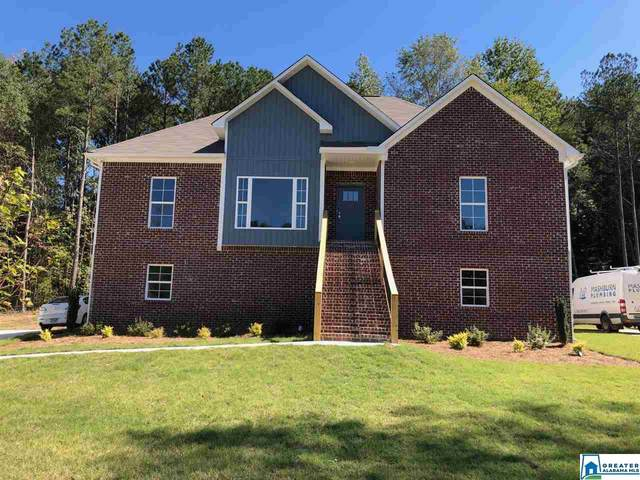135 Cedar Branch Cir, Odenville, AL 35120 (MLS #886986) :: Bentley Drozdowicz Group