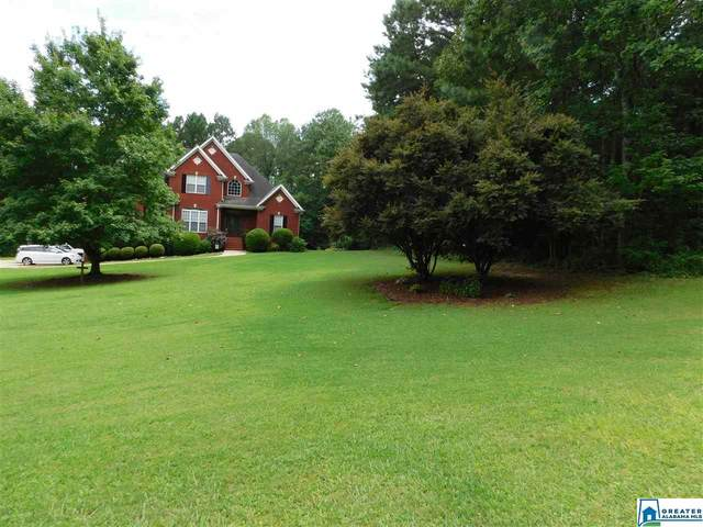 446 Oak Valley Rd, Springville, AL 35146 (MLS #890767) :: Josh Vernon Group