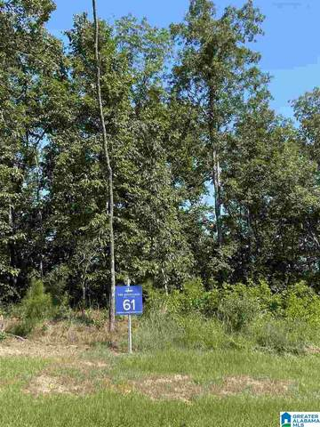 3095 Oakridge Way #61, Chelsea, AL 35043 (MLS #891625) :: Howard Whatley