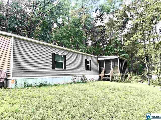 877 Pine Mountain Rd, Remlap, AL 35133 (MLS #894182) :: Josh Vernon Group