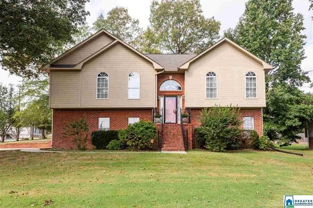 9 Laurel Oak Ln, Odenville, AL 35120 (MLS #896915) :: LIST Birmingham